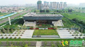 邯郸丛台产业新城最新建设实况图组,美呆了!