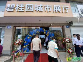 8月2日碧桂园雍华府城市展厅开放