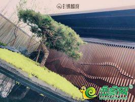 碧桂园锦麟府实景图(2020.8.27)