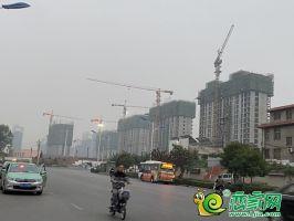 翠湖小区实景(2020.10.12)