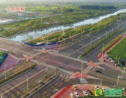 赵王大街和纬五路交叉口实景图