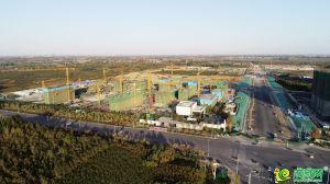 公園九里實景圖(2020.11.5)