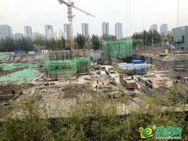 金都九珑宸实景图(2020.11.28)