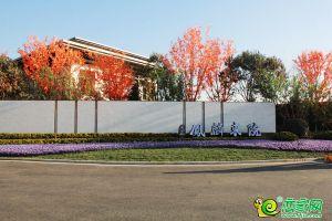 天正·鳳麟東院營銷中心(2021.1.1)
