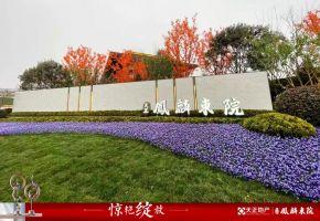 1月1日天正凤麟东院新中式美学示范区惊艳绽放!